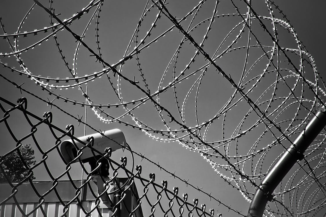 Grayscale Photo of Barbed Wire