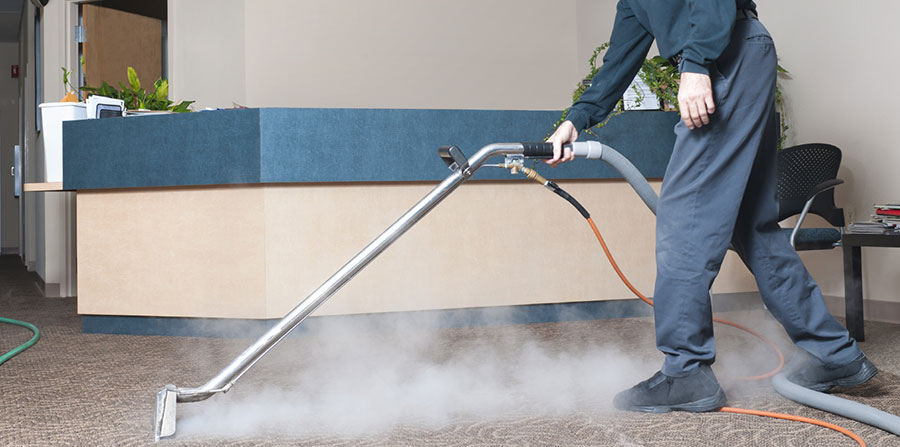 7 Pro Tips on How to Clean Your Carpet